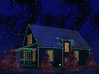 max usa christmas house v1