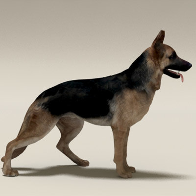 lightwave german shepherd