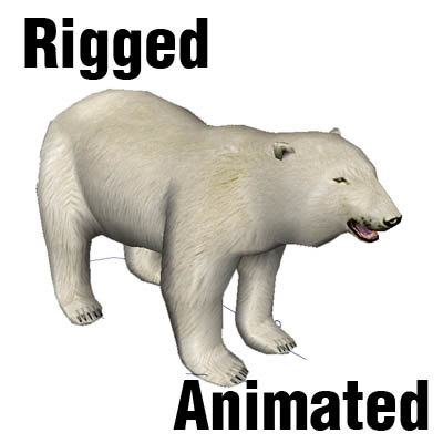 3d rigged bear
