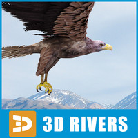sea eagle 3d 3ds