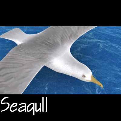seagull ready games 3d model