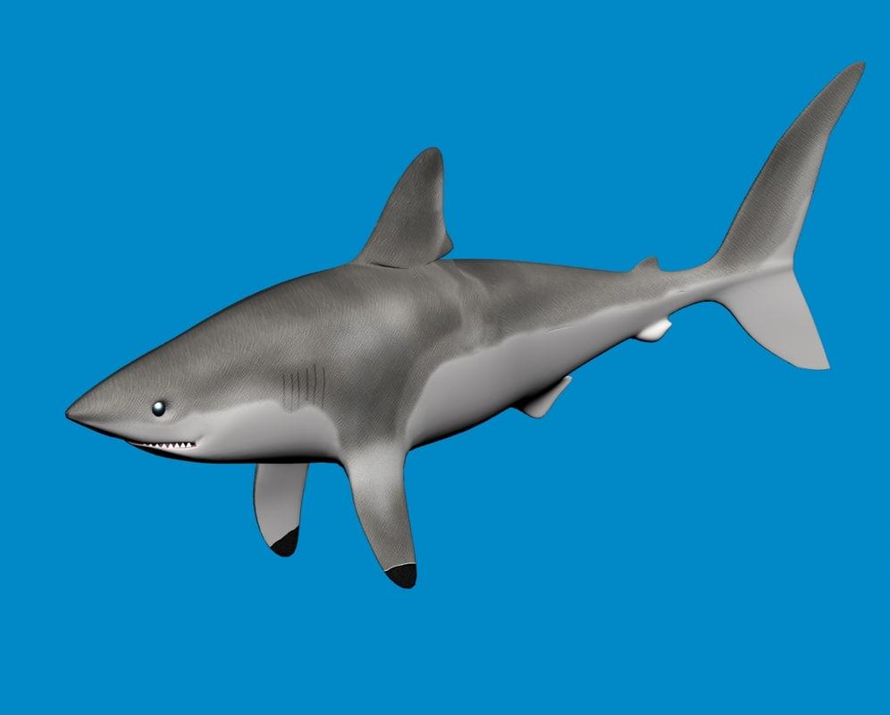 3d model shark porbeagle