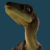3d raptor model