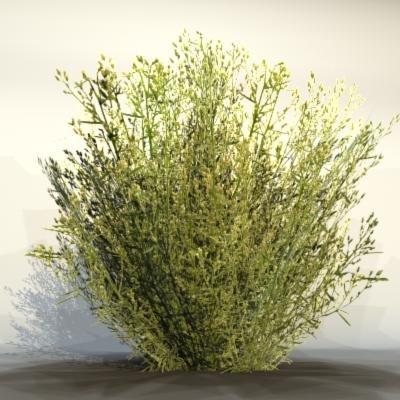 3d max pc grass