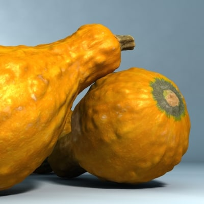 3d gourd res