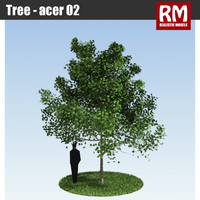 Tree - acer 02