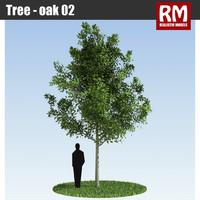 Tree - oak 02