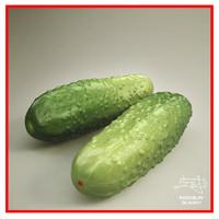 Cucumber 3d model + BONUS
