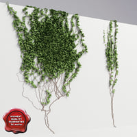 wall ivy v5 3d 3ds