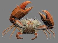 maya crab