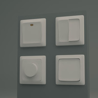Common Light switches