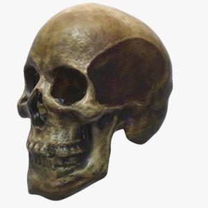 broken human skull 3d model