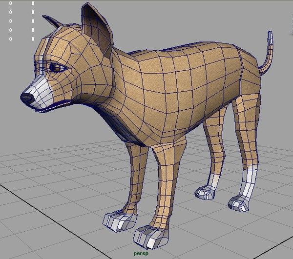 chihuahua dog x