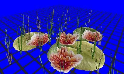 lilly lillypad 3d model