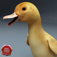 3ds max duckling pose2