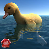 3d duckling pose4 model