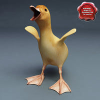 3d model duckling pose6