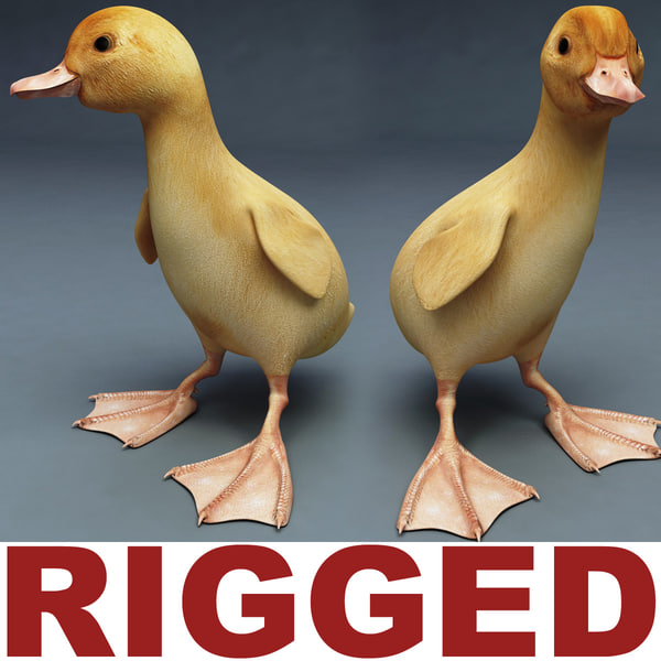 max duckling rigged