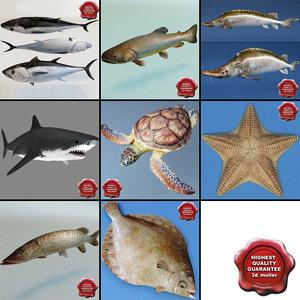 3d model fishs v3