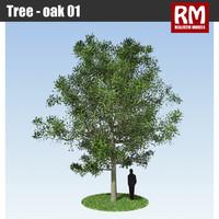 Tree - oak 01