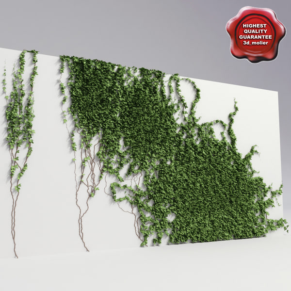 3dsmax wall ivy v4