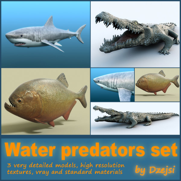3d water predators shark crocodile
