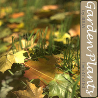 3d fields autumn grass plant