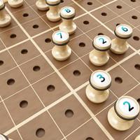 Wooden Sudoku Board