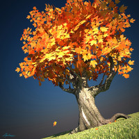 3d maple tree scene