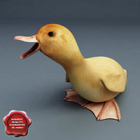 3d model duckling pose5