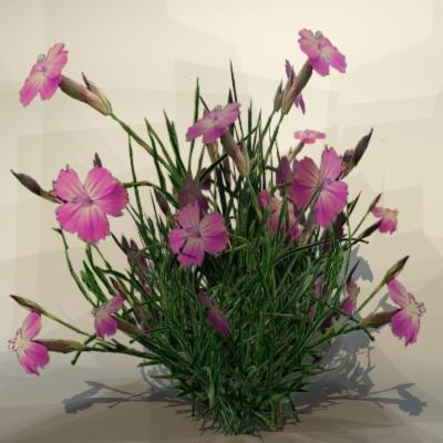 3d model of pc grass