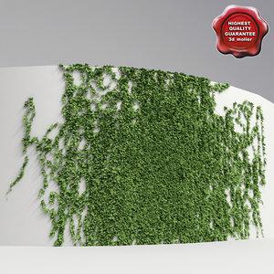 3d model wall ivy v1