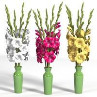 gladiolus elegant flower bouquet red white yellow high vase