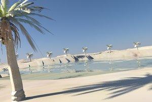 3d oasis model