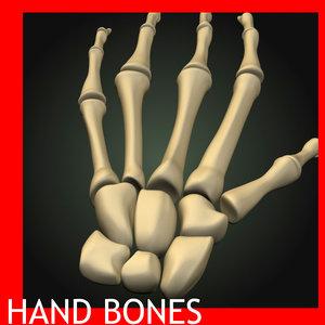 3ds max hand bones
