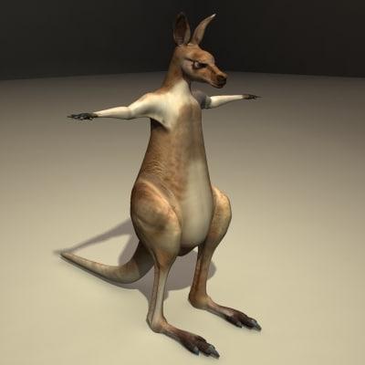 male kangaroo obj