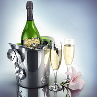 3d cooling champagne dom perignon model