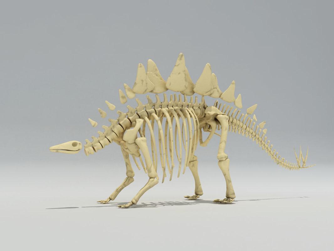 stegosaurus skeleton 3ds