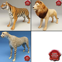 African Animals Collection V1