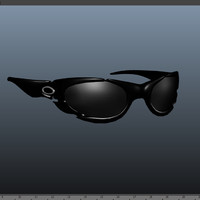 plate oakleys 3d model