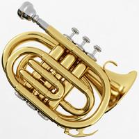 3d pocket trumpet model