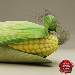3d model corn modelled