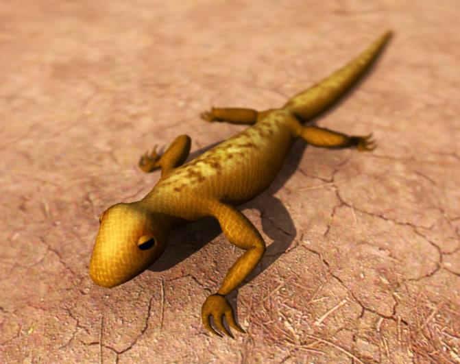 3d gecko lizard