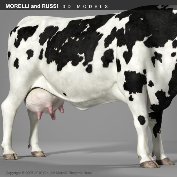 morelli cow 3d obj