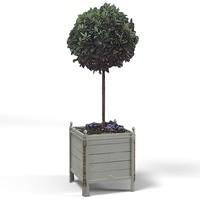 planter box plant 3d model
