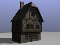 packed medieval buildings 3d model