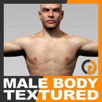 dxf realistic human male body