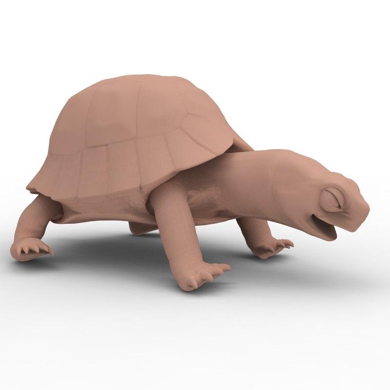 3d model tortoise