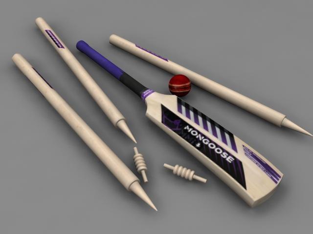 3d model cricket sport bat
