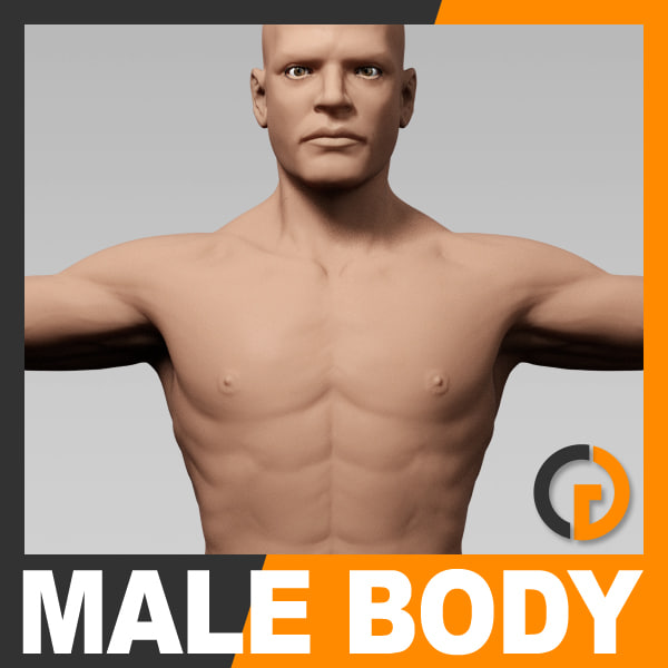 3d model realistic human male body